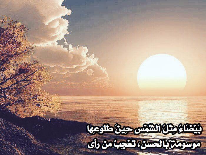 ب ي ض اء م ث ل الش م س ح ين ط ل وع ها Celestial Clouds Outdoor