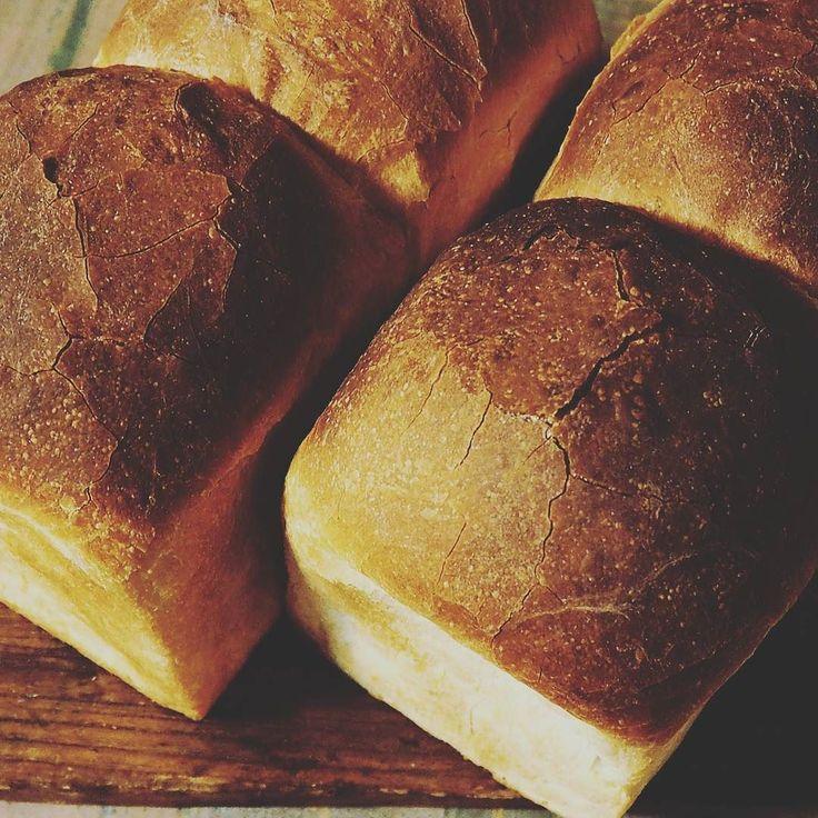 ハードトースト  #手作りパン#山型食パン#食パン#国産小麦#春よ恋##ハードトースト#日々のこと#暮らし#備忘録#foodstagram#foodphoto by mammacake0308