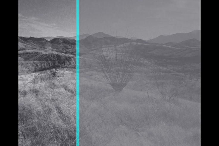 Julio Cesar Morales - We are the Dead #8; 2013