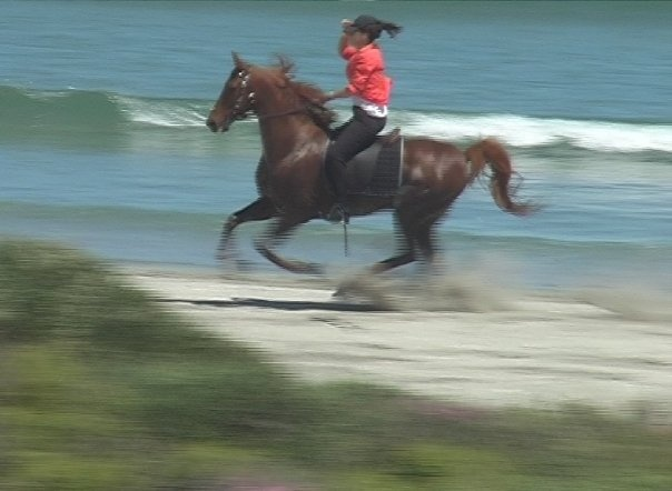 Beach rides in Paternoster