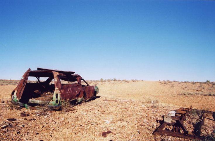 У политиков, ученых и экономистов есть планы на Сахару