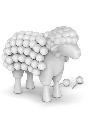 Stuck on Ewe Sheep Desktop Push Pin Set by Fred & Friends, Home Decor, White