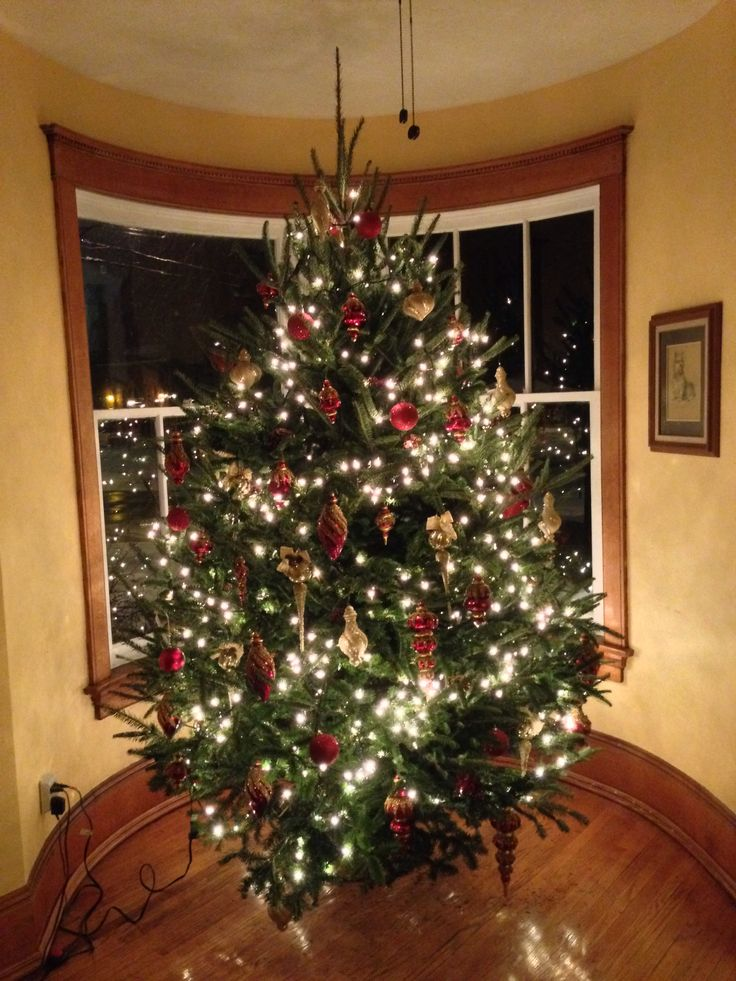 Christmas Tree... 9 ½ foot real Fir, smells Awesome!