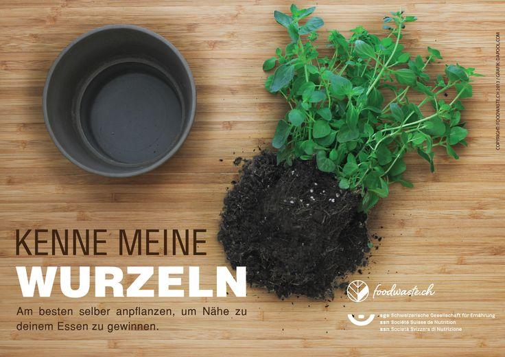 #foodwaste #kräuter