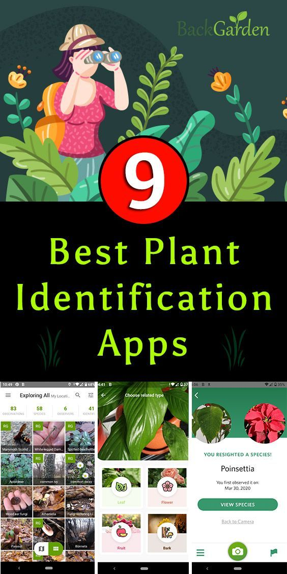 ad859406cb760072dd6a4f6021ac0373 - Best Free Gardening Apps For Android
