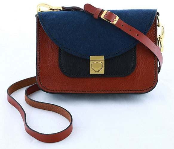 hummingbird lover-a leather satchel in 3 contrasting colors.