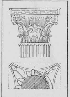 Corinthian Order (from Temple of Apollo)