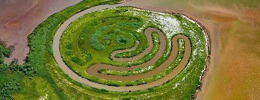 Land art in De Biesbosch National Park, Netherlands © Frans Lemmens/Alamy