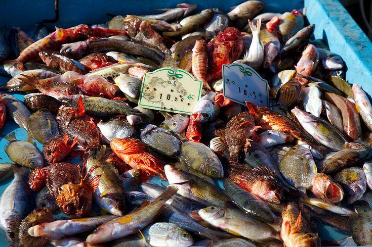 Cette soupe doit être faite avec de très beaux poissons de roche. Demandez a votre poissonnier. Evitez les poissons bleu type maquereau, chinchard. Ingrédients pour 5/6 personnes 1 kg de poissons d…
