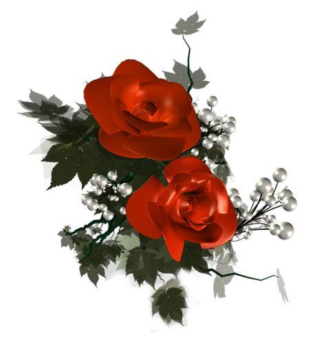 Krásné růže, růže, mé krásné růže, růže, krásné růže, růže, PNG růže, fialové růže, růže, srdce, PNG růže - eva6 Blog - K -Csiza J-néErzsike přítelkyně, A-Antalffyné Irene, A-Csorbáné Ildikó, Gizike můj přítel, A-Ildykó můj přítel, A-Kata přítelkyně, A-Klárika můj přítel, A-Klementinától I, A-Kozma Anna Lidia, A-Margitka můj přítel, A-Maroko můj přítel, A-Mirjam přítelkyně, A-Červená Karkulka přítelkyně A-Suzymamától, Adelaide Hiebel obrazy, Alan Giana krásné obrázky, Animal Pictures…