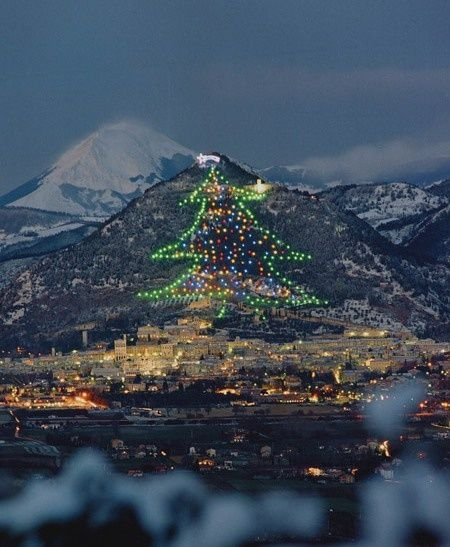 The world's largest christmas tree on the slopes of Mount Ingino, Gubbio, Italy. Whoa.