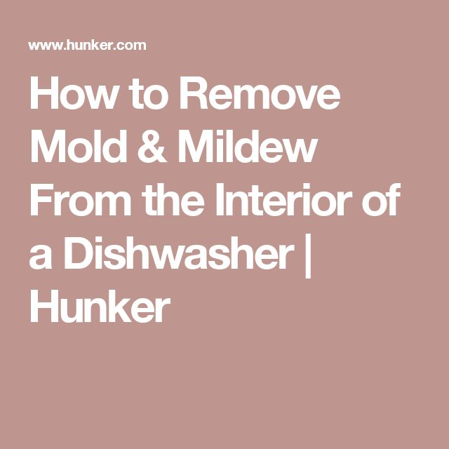 how to clean mold out of dishwasher