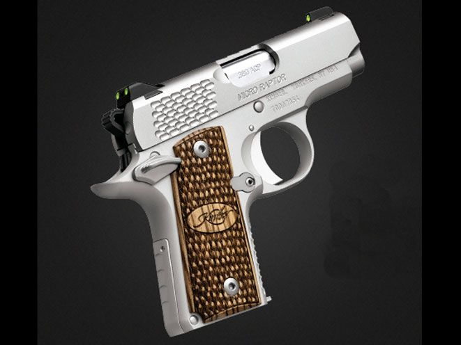 New Kimber Micro Pistols For 2015 | VIDEO The new Micro Raptor Stainless and Micro Advocate offer reliable .380 ACP defense in snag-free subcompact packages built for everyday carry! - See more at: http://www.personaldefenseworld.com/2015/01/new-kimber-micro-pistols-2015/#kimber-micro-raptor-stainless