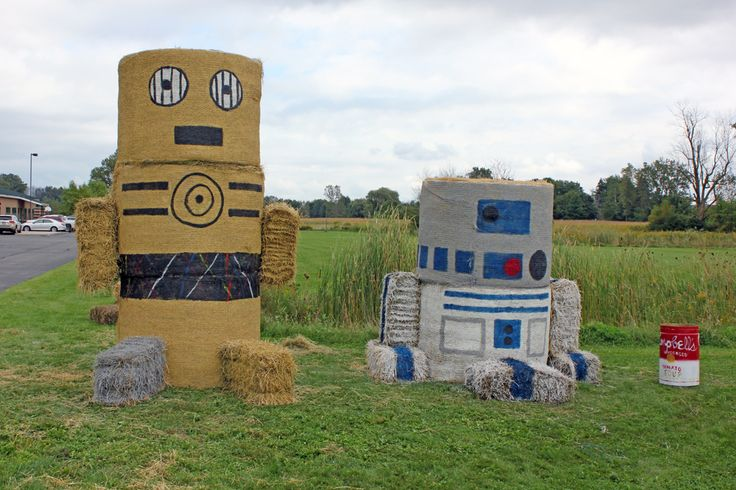 Star Wars! C-3PO and R2-D2 hay art created by TrueNorth Community Services in Fremont, MI. Part of the Harvest Festival hosted by the Fremont Area Chamber of Commerce. #StarWars, #HayArt, #TrueNorth