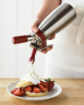Whip cream dispenser. I would feel so fancy using this instead of a spoon and a tub from the store. hahaha