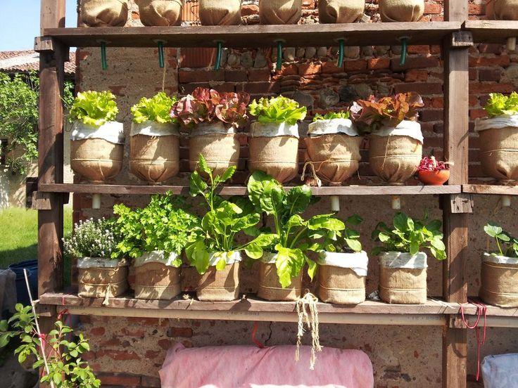 un mur de pots de bouteilles de plastique pour planter des légumes et autres - planting fruits and vegetables on a wall of plastic bottles