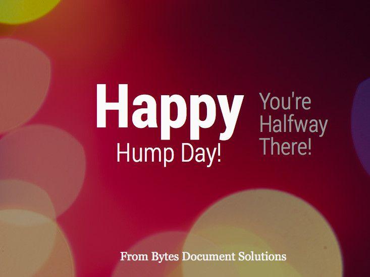 Happy Wednesday, everyone!