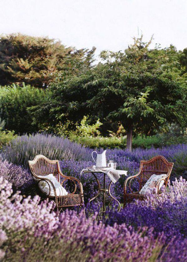 Une allée de jardin provençale