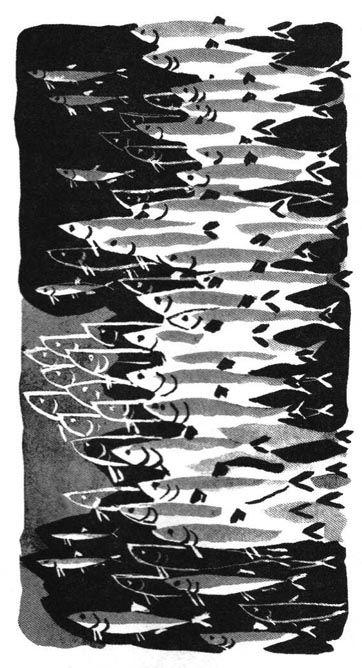1089 best art fish ii images on pinterest fish pisces for Davy jones locker fishing