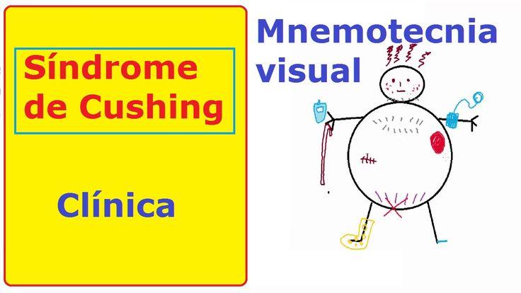 Síndrome de Cushing: memoriza la clínica (clases de medicina)