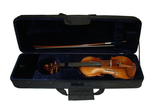 Palatino Virtuoso VN-970 Violin 3/4 Outfit - BC Wholesalers Antique European Style Finish Violin featuring Boxwood Fittings