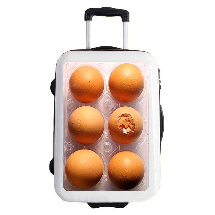 vinilo especial para maletas. modelo EGGS