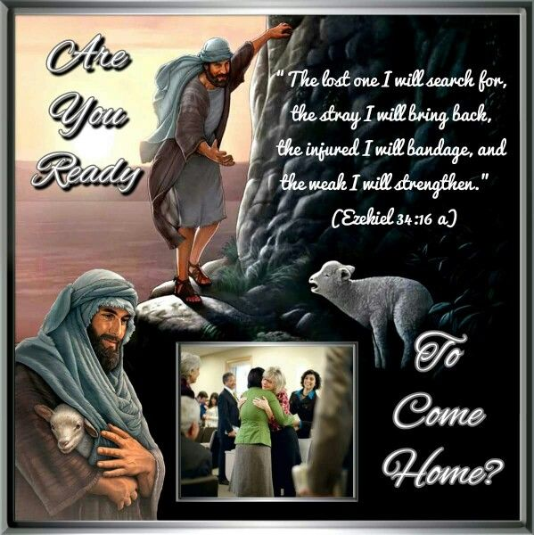 """The lost one I will search for, the stray I will bring back, the injured I will bandage, and the weak I will strengthen."" Ezekiel 34:16 JW.ORG in more than 760 languages. Bible based videos for families, teens and children."
