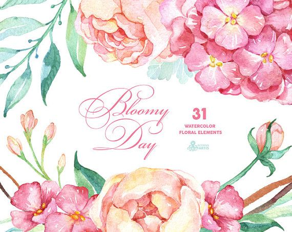 Bloomy Day: 31 Floral Elements hydrangea peonies by OctopusArtis