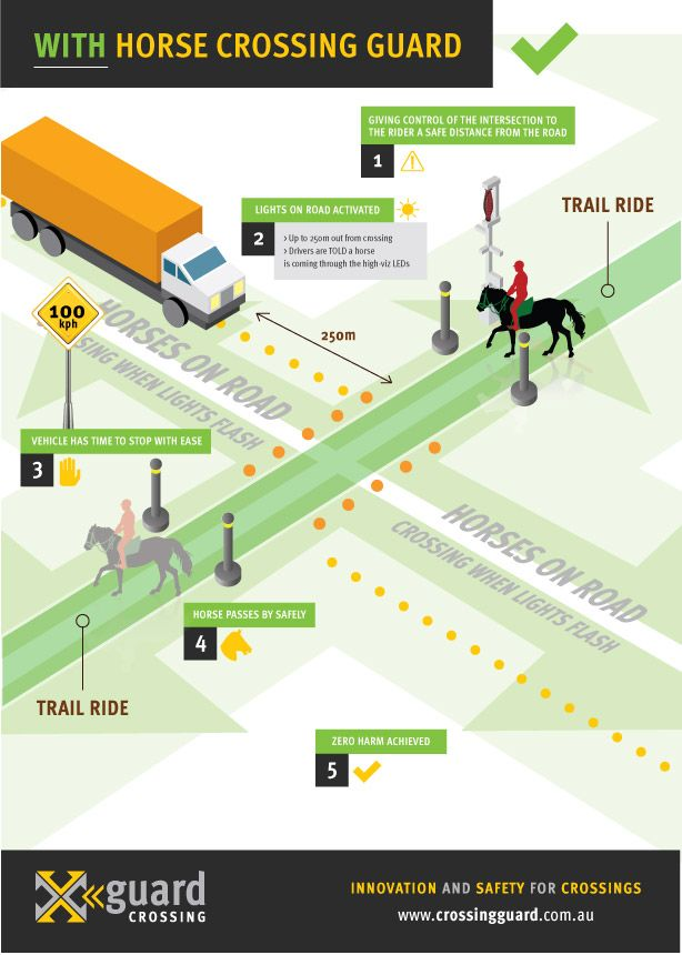 Xguard Infographic-horse-web-02.jpg