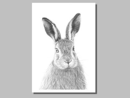 Hare. Limited Edition Giclee Print