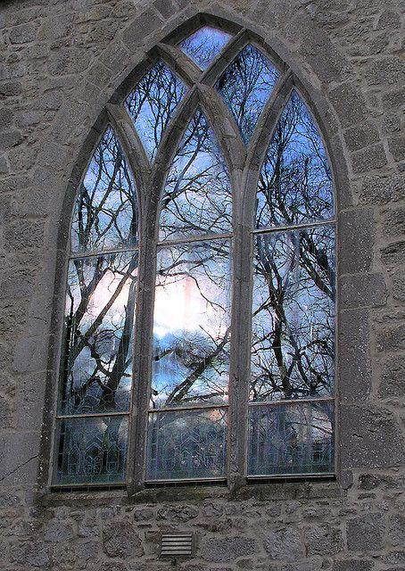 枝によって細かくフレーミングされる窓