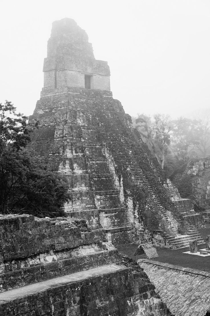 Everything you could possibly need for a successful visit to Tikal National Park UNESCO Site in Guatemala. Buses, ticket price, packing list and hotel info!