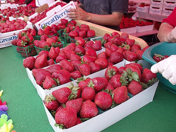 California Strawberry Festival - Oxnard, California