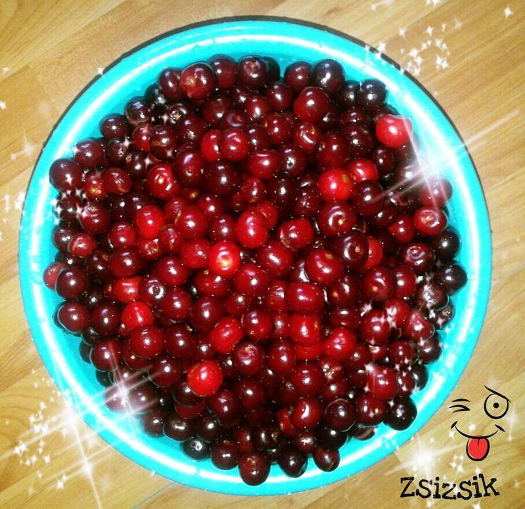 Harvest XD