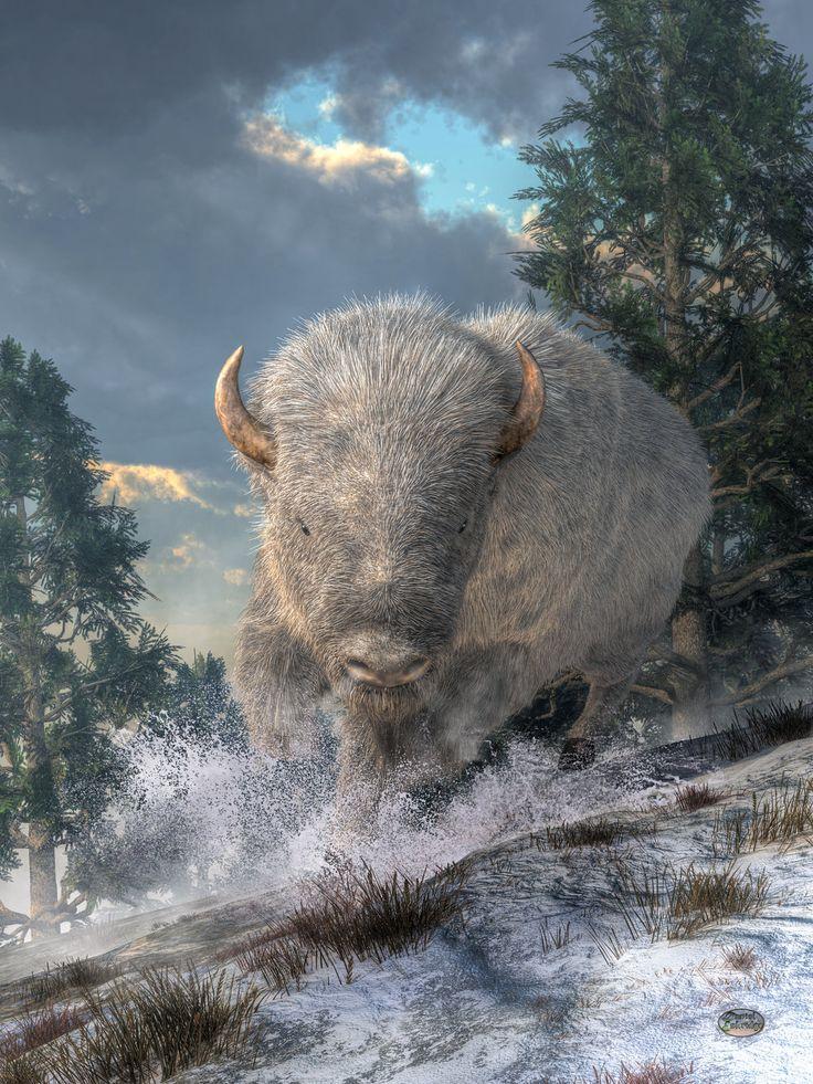 White Bison by deskridge.deviantart.com on @DeviantArt