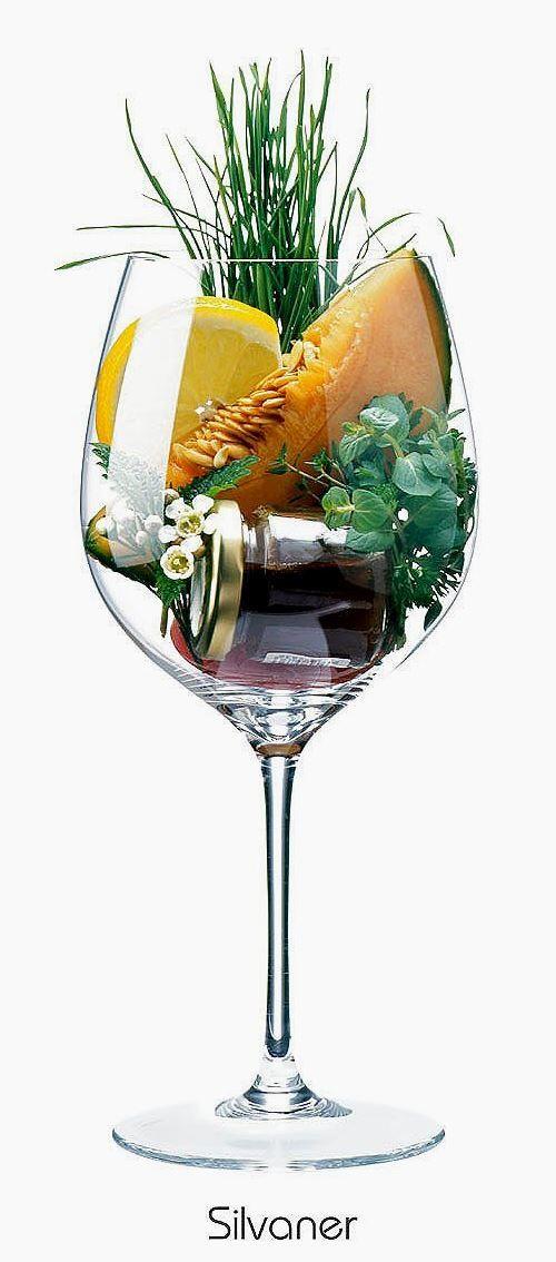 Silvaner or Grüner Silvaner   Aromas of cantaloupe, lemon peel, blossom, grass, herbs, honey   Alsace, France & Franconia, Germany