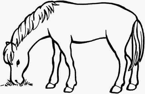54 best images about ausmalbilder pferde on pinterest