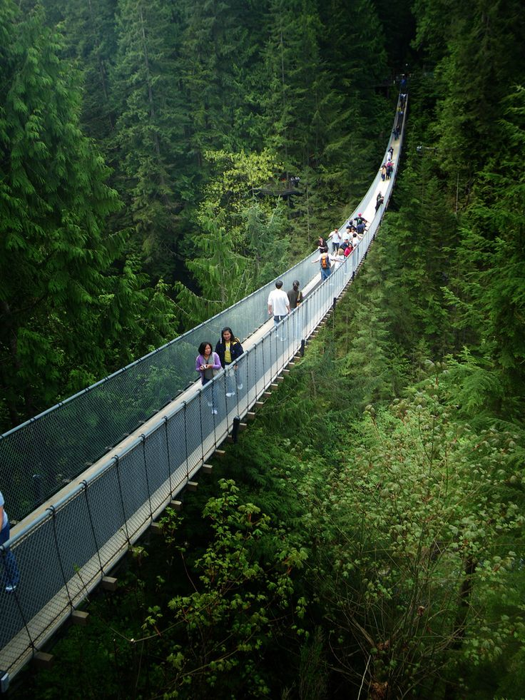 The Capilano Suspension Bridge, North Vancouver, British Columbia, Canada.