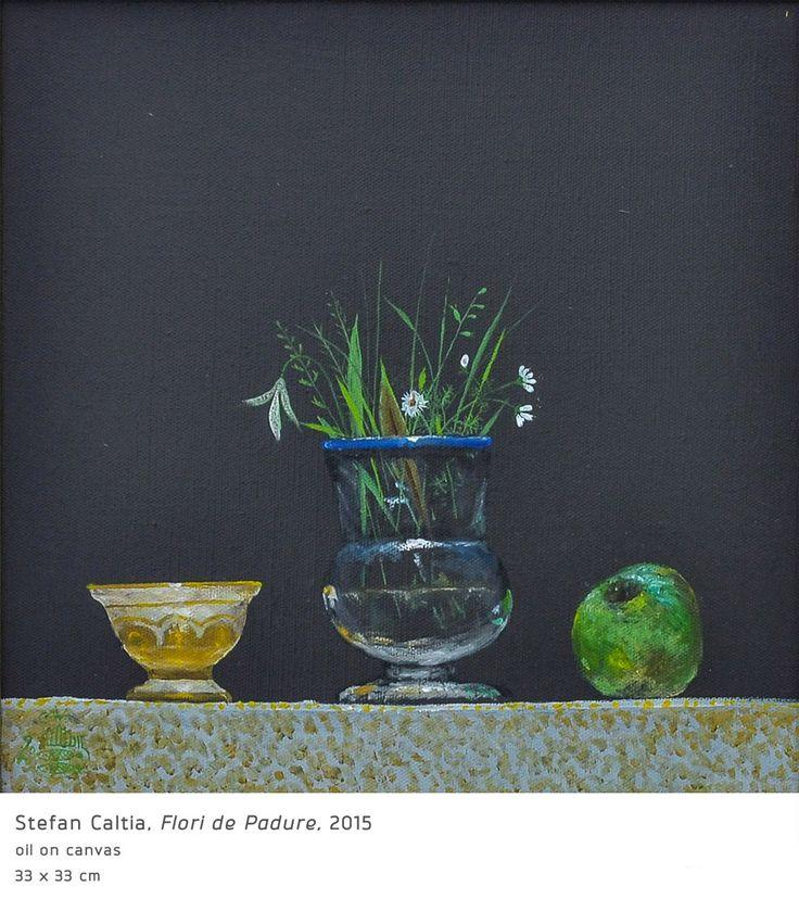 #16 Flori de Padure Stefan Caltia