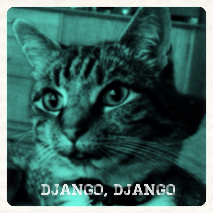 [Opening scene] Django Reinhardt, Mercury-winning cat, on the phone to his record company. 'Yes, I like the album cover ... The stalker? Ye-es, I am taking it seriously. Anyway, you said he's harmless... What bomb? Bomb? You didn't mention THAT! ... No, I don't need a minder. What you've hired one? John Barry... Expect him today?... And he's what? ... Well. That'll be interesting.'