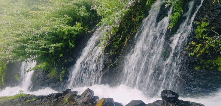 ¿Por qué visitar El Hierro y La Palma? - http://www.absolutcanarias.com/por-que-visitar-el-hierro-y-la-palma/