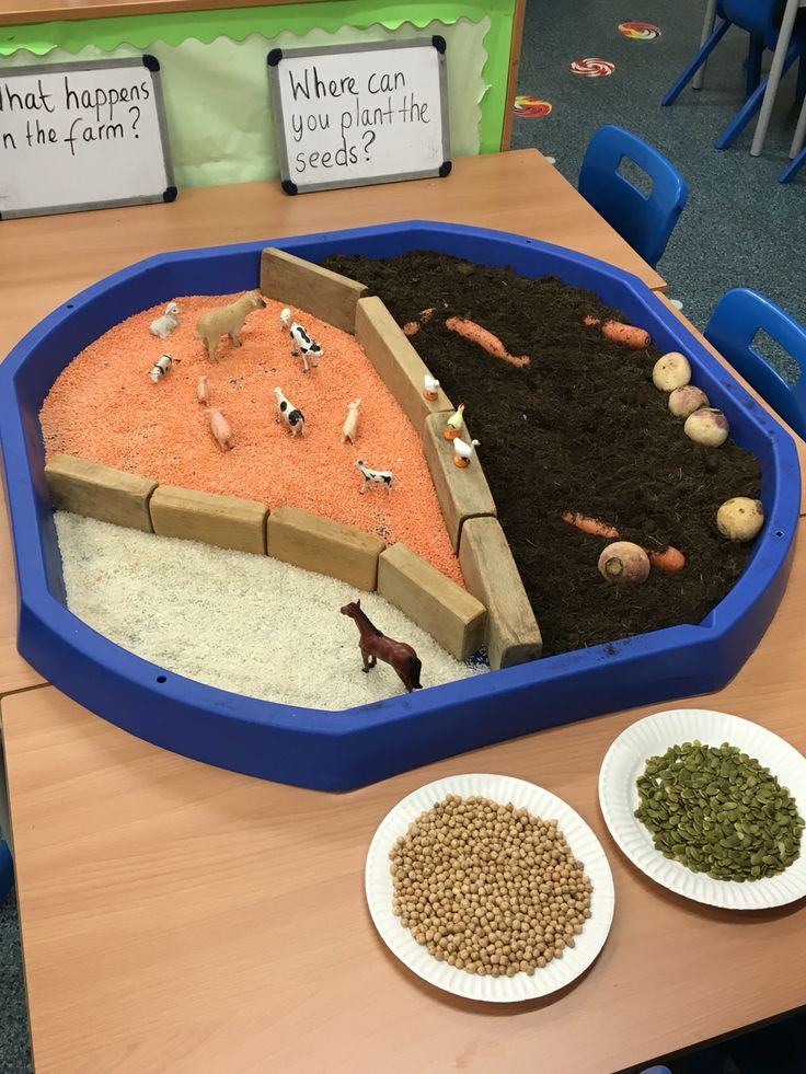 Farm yard using soil, vegetables, red lentils, rice and block dividers. Linked to the enormous turnip for continuous provision.