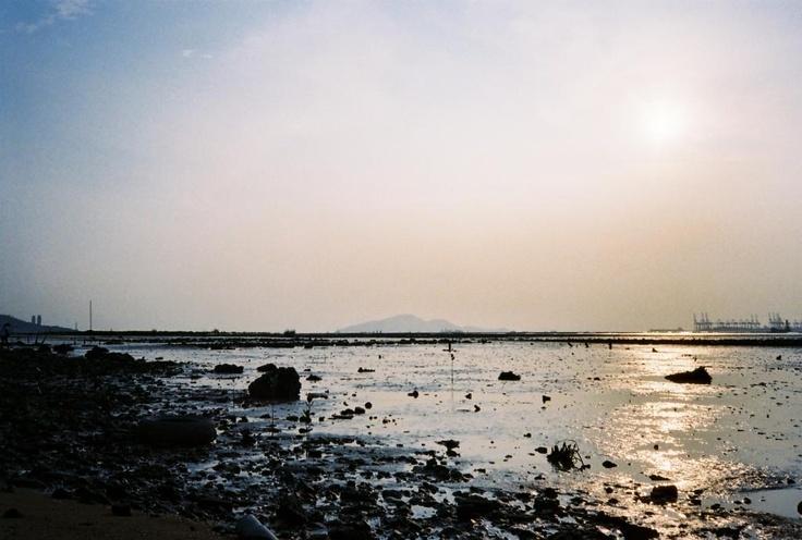sunset in 下白泥