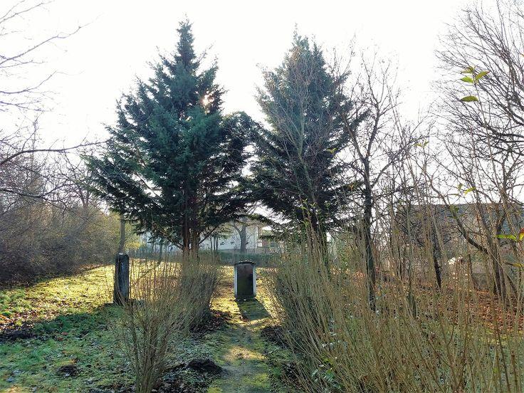 Eisler Mátyás Emlékpark (zsidó sírkert) (Páty) http://www.turabazis.hu/latnivalok_ismerteto_4349 #latnivalo #paty #turabazis #hungary #magyarorszag #travel #tura #turista #kirandulas
