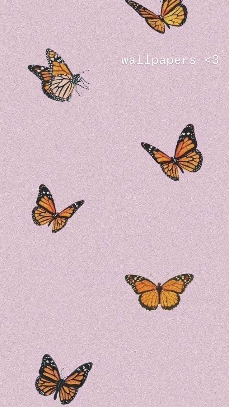 Free Aesthetic Backgrounds, Aesthetic Iphone Wallpaper, Aesthetic Wallpapers, Butterfly Wallpaper Iphone, Iphone Background Wallpaper, Pastel Background Wallpapers, Pastel Iphone Wallpaper, Pink Backgrounds, Office Wallpaper