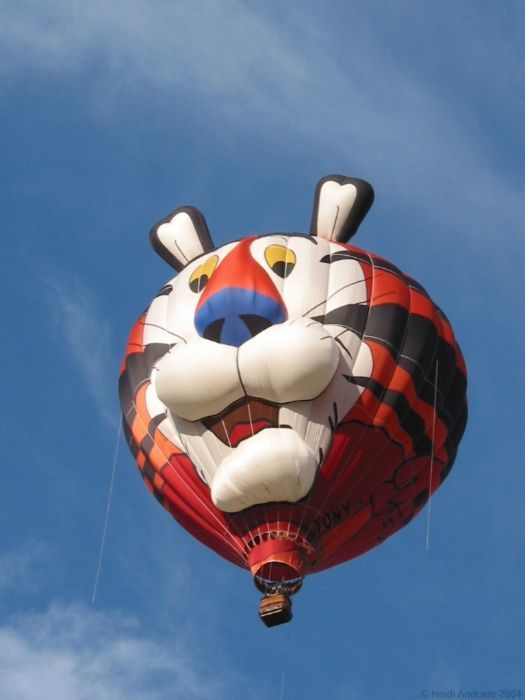 Funny Hot Air Balloon