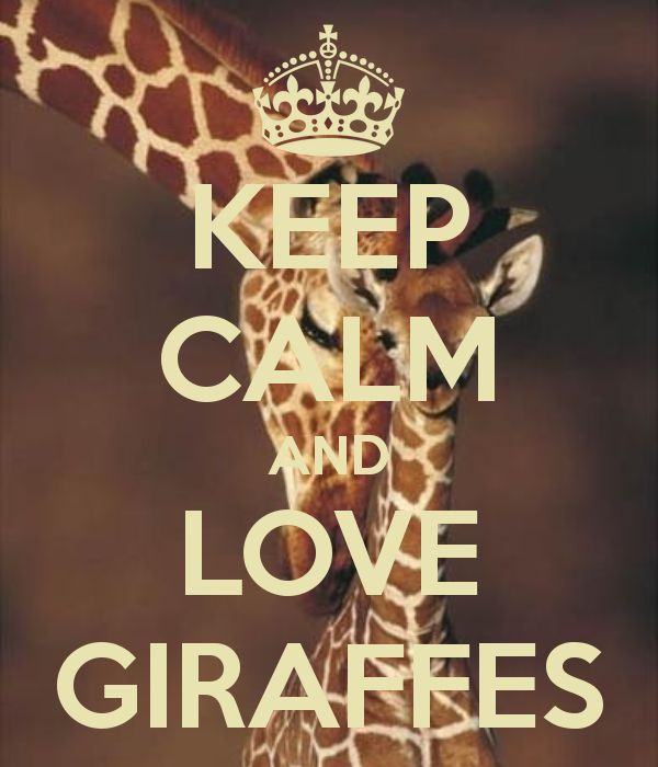 KEEP CALM AND LOVE GIRAFFES - KEEP CALM AND CARRY ON Image Generator - brought to you by the Ministry of Information