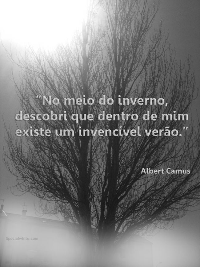 """""""No meio do inverno, descobri que dentro de mim existe um invencível verão.""""  Albert Camus"""