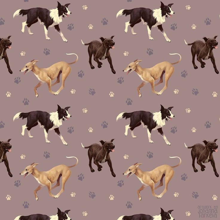 "Polubienia: 2,829, komentarze: 10 – Johanna Tarkela (@lhuin) na Instagramie: ""My dog pattern is done! Since this is based on my volunteer job in a shelter, I'm selling this…"""