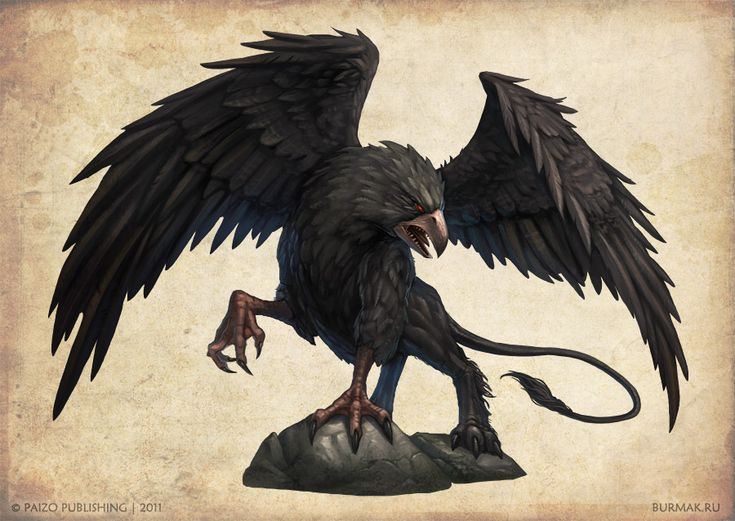 Black griffon Picture  (2d, fantasy, creature, griffin, griffon)